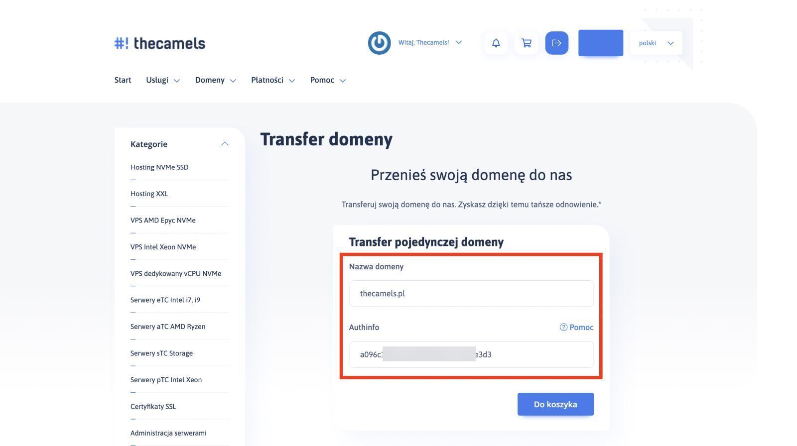 Panel klienta - transfer domeny